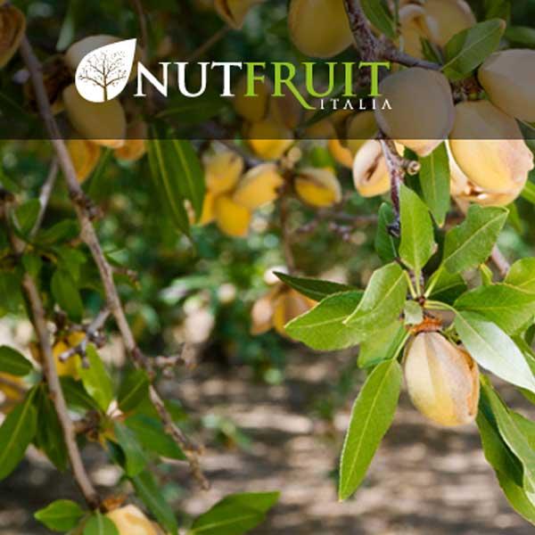 Azienda Nutfruit
