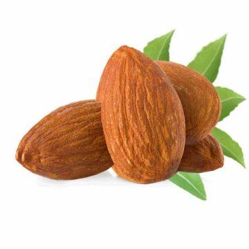 Nutfruit Italia Molise mandorle dolci